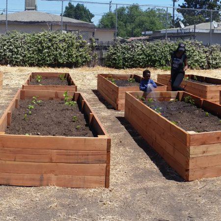El Pueblo Community Garden